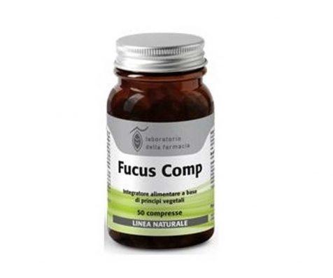 FUCUS COMPLEX