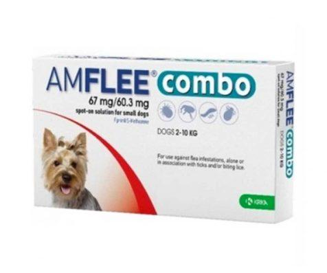 AMFLEE COMBO spot-on soluzione 1 pipetta